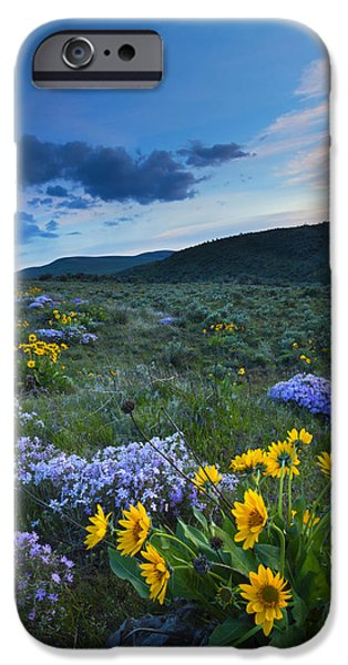 Snowy iPhone Cases - Cowiche Spring Sunset iPhone Case by Mike Dawson