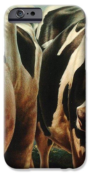 Cows 1 iPhone Case by Hans Droog