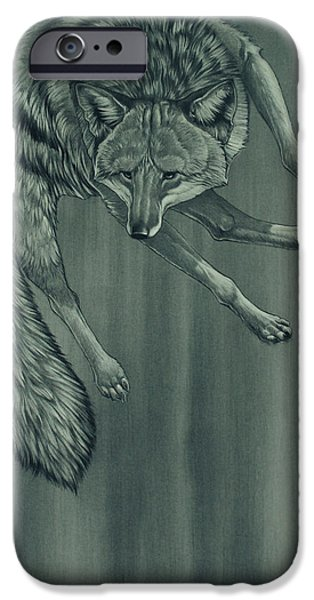 Coyote Art iPhone Cases - Coyote iPhone Case by Aaron Blaise
