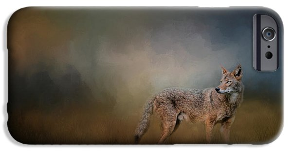Coyote Art iPhone Cases - Coyote At Shiloh iPhone Case by Jai Johnson