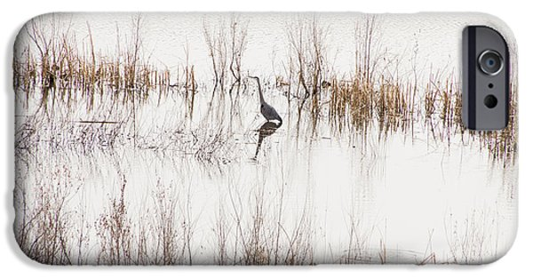 Prescott iPhone Cases - Crane in Reeds iPhone Case by Laura Pratt