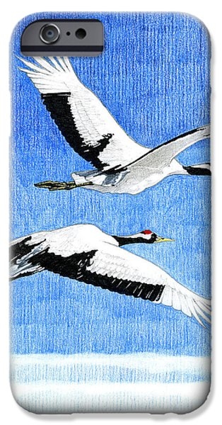 Animal Drawings iPhone Cases - Cranes in flight iPhone Case by John Firth