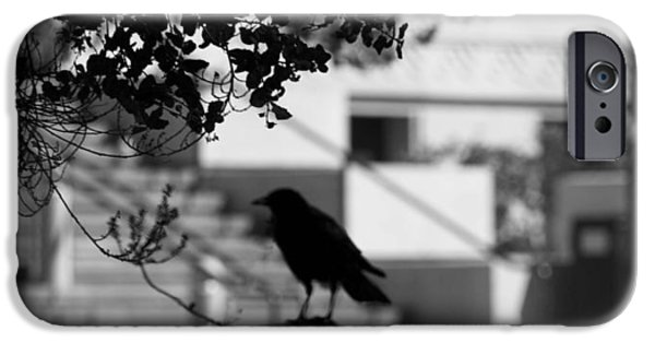 Cut-outs iPhone Cases - Crow Cameo iPhone Case by Kandy Hurley