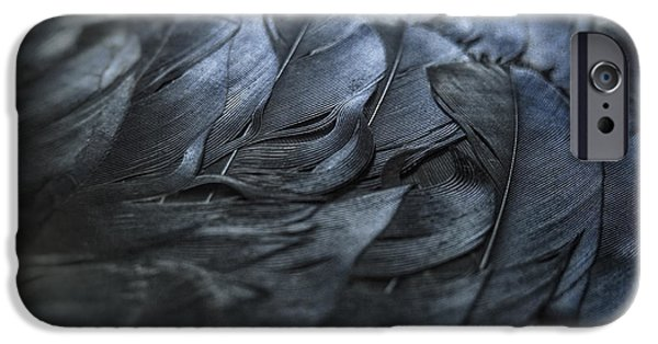 Crows iPhone Cases - Crow Feathers iPhone Case by Angie Rea
