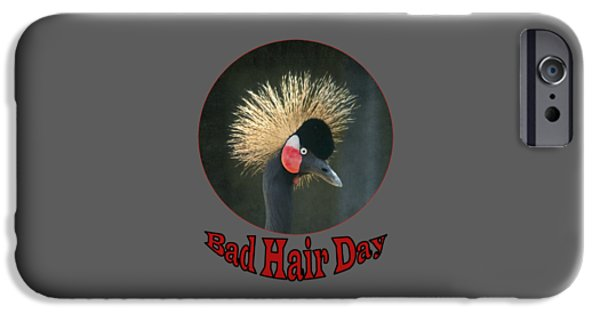 Gray Hair iPhone Cases - Crowned Crane - Bad Hair Day - Transparent iPhone Case by Nikolyn McDonald