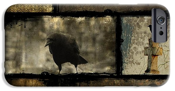Crows iPhone Cases - Crows And One Rabbit iPhone Case by Gothicolors Donna Snyder