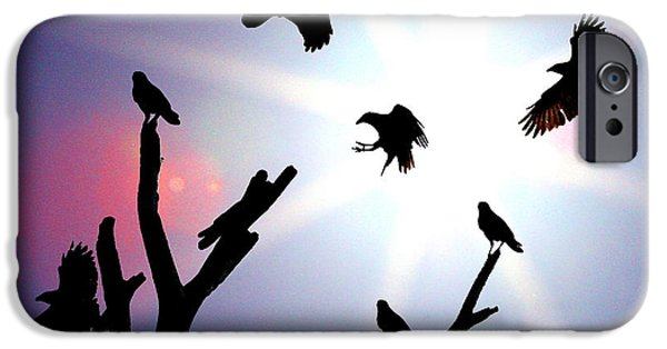 Consumerproduct iPhone Cases - Crows nest iPhone Case by W Gilroy