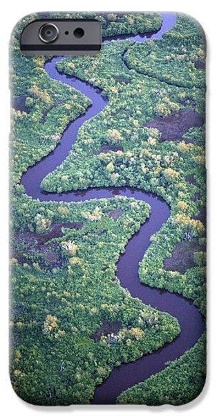 Mangrove Forest iPhone Cases - Crrek through black mangrove iPhone Case by Michael Turco