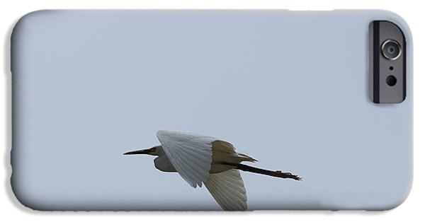 Marine iPhone Cases - Cruising Egret iPhone Case by Terrie Stickle