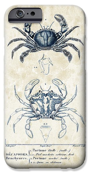 Fossil iPhone Cases - Crustaceans - 1825 - 03 iPhone Case by Aged Pixel