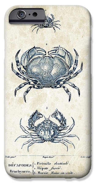 Fossil iPhone Cases - Crustaceans - 1825 - 07 iPhone Case by Aged Pixel