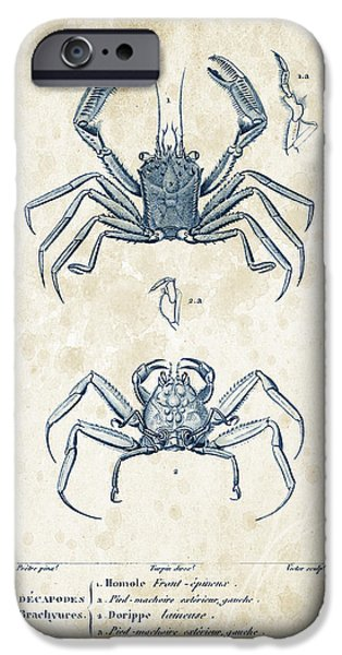 Fossil iPhone Cases - Crustaceans - 1825 - 15 iPhone Case by Aged Pixel