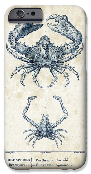 Fossil iPhone Cases - Crustaceans - 1825 - 18 iPhone Case by Aged Pixel