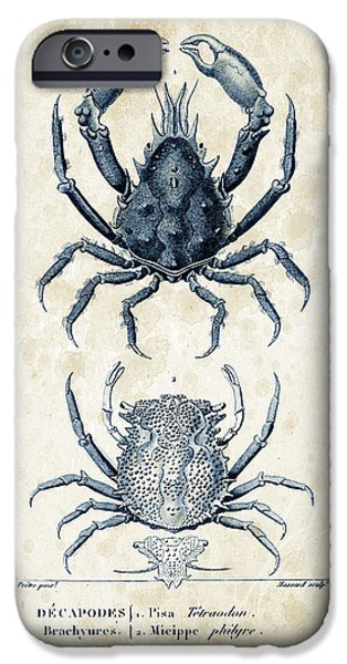 Fossil iPhone Cases - Crustaceans - 1825 - 20 iPhone Case by Aged Pixel