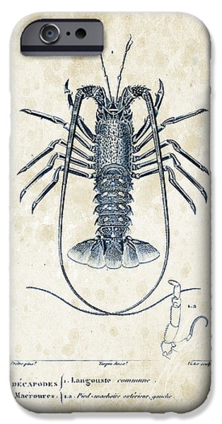 Fossil iPhone Cases - Crustaceans - 1825 - 30 iPhone Case by Aged Pixel