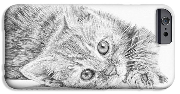Beautiful Cat Drawings iPhone Cases - Curious Kitten iPhone Case by Frances Vincent