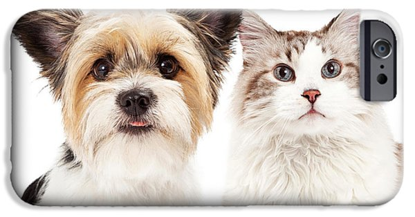 Dog Close-up iPhone Cases - Cute Dog and Cat Closeup iPhone Case by Susan  Schmitz