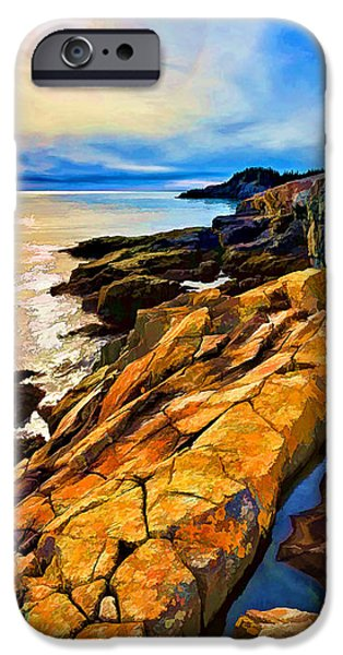 Ledge Digital iPhone Cases - Cutler Coast Lichen 2 iPhone Case by Bill Caldwell -        ABeautifulSky Photography