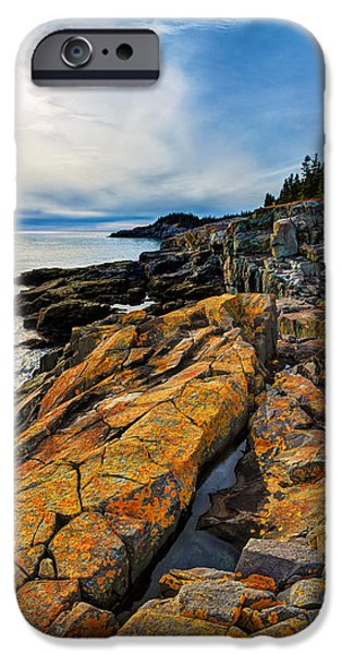 Forest iPhone Cases - Cutler Coast Lichen iPhone Case by Bill Caldwell -        ABeautifulSky Photography