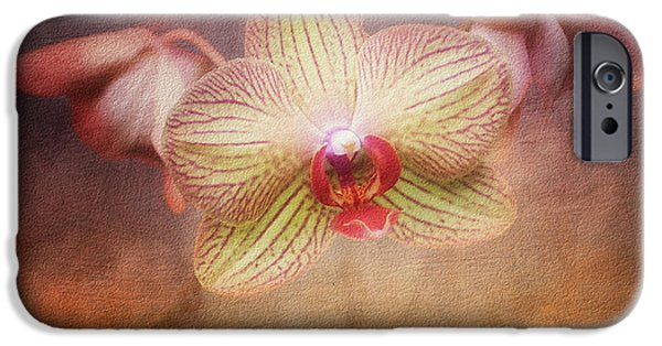 Orchids Photographs iPhone Cases - Cymbidium Orchid iPhone Case by Tom Mc Nemar