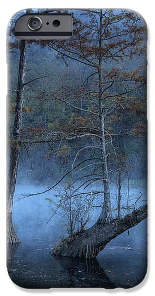 Cypress Awakening iPhone Case by Tamyra Ayles