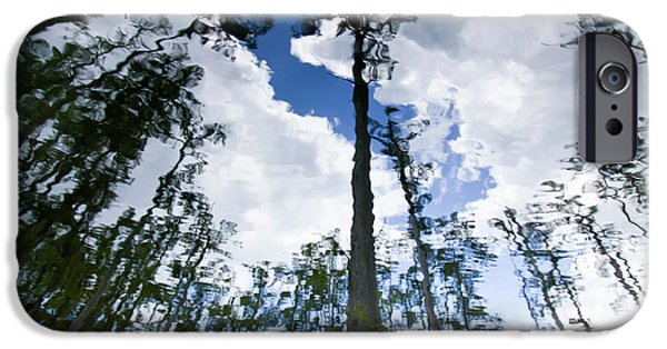 Cypress Trees iPhone Cases - Cypress Reflections iPhone Case by Dustin K Ryan