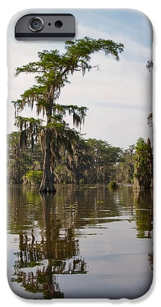 Cypress Trees and Spanish Moss in Lake Martin iPhone Case by Louise Heusinkveld