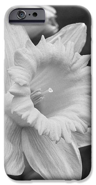 Floral Digital Art Digital Art iPhone Cases - Daffodil iPhone Case by Arlene Carmel