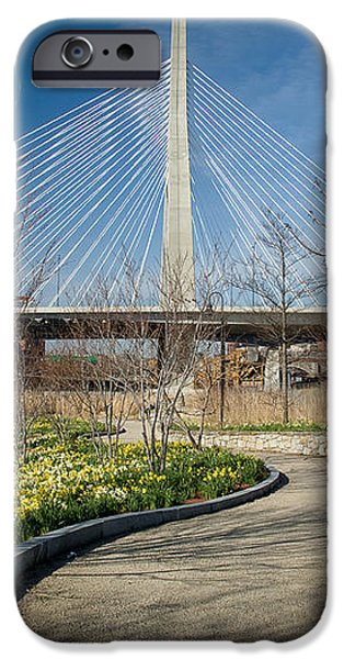 Daffodil Curve iPhone Case by Susan Cole Kelly