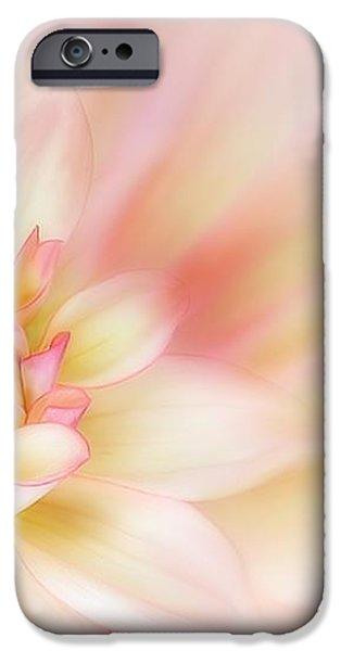 Dahlia iPhone Case by John Edwards