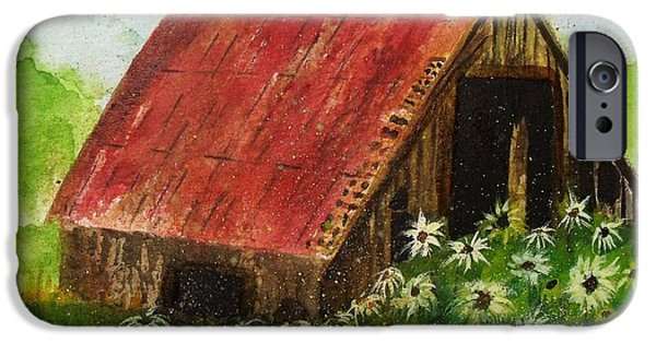 Old Barns iPhone Cases - Daisy Barn iPhone Case by Dottie Gillespie