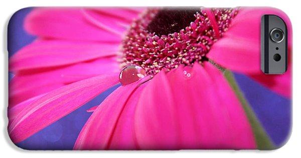 Innocence iPhone Cases - Daisy Fairy iPhone Case by Krissy Katsimbras