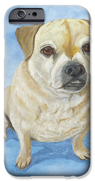 Dogs iPhone Cases - Daisy Mae iPhone Case by Sharon Karlson