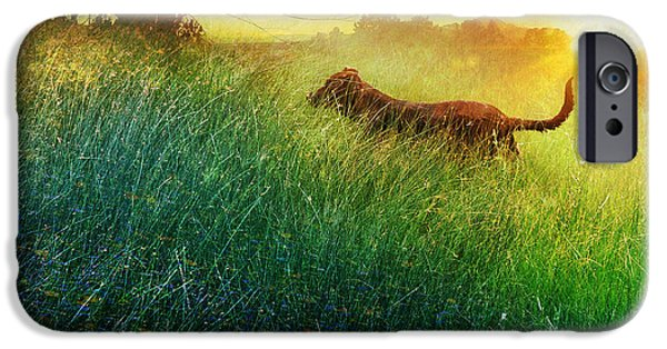 Puppies Digital iPhone Cases - Daisy Maes Morning Romp iPhone Case by R christopher Vest