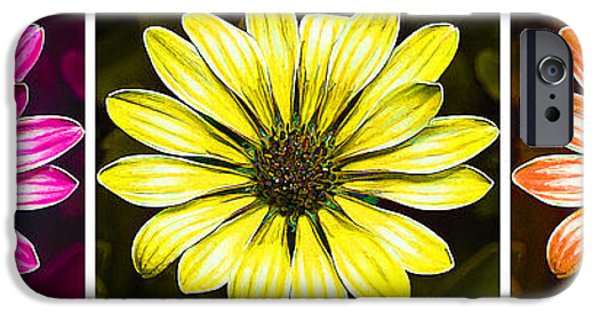 Floral Digital Art Digital Art iPhone Cases - Daisy Triptych 2 iPhone Case by Bill Caldwell -        ABeautifulSky Photography