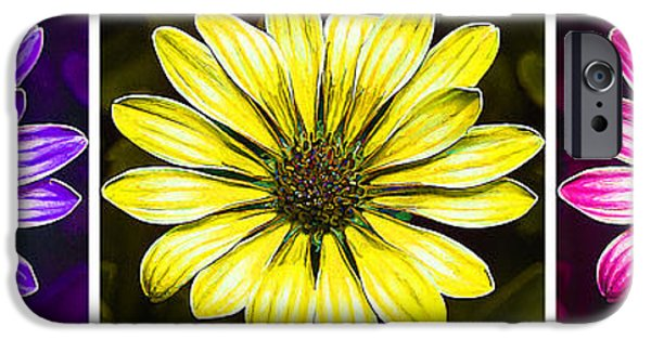 Floral Digital Art Digital Art iPhone Cases - Daisy Triptych iPhone Case by Bill Caldwell -        ABeautifulSky Photography