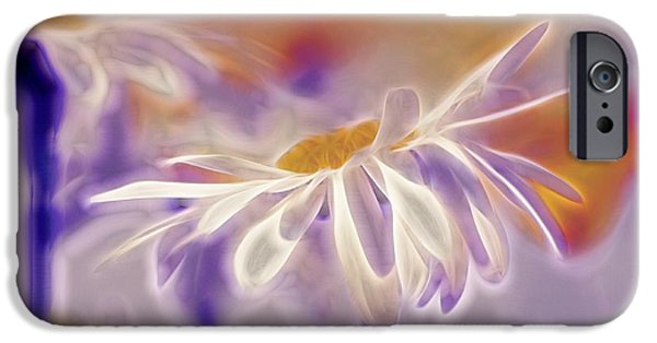 White Daisies iPhone Cases - Daisyday - 101b iPhone Case by Variance Collections