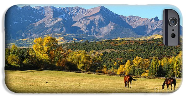 Meadow Photographs iPhone Cases - Dallas Creek Meadows iPhone Case by Alex Cassels