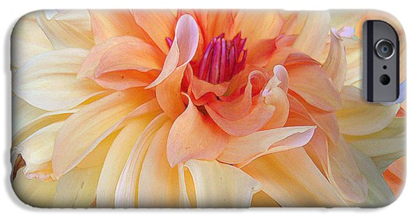 Botanic Illustration Digital Art iPhone Cases - Dancing Dahlia iPhone Case by Michele  Avanti