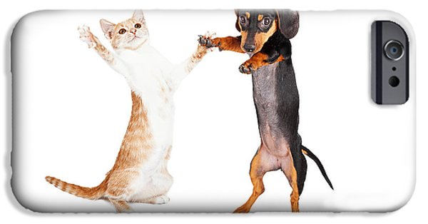 Action Shot iPhone Cases - Dancing Doxie Dog and Kitten iPhone Case by Susan  Schmitz