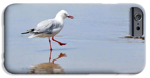 Sea Birds iPhone Cases - Dancing in time with my Reflection iPhone Case by Kaye Menner
