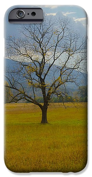 Dare to Stand Alone iPhone Case by Michael Peychich
