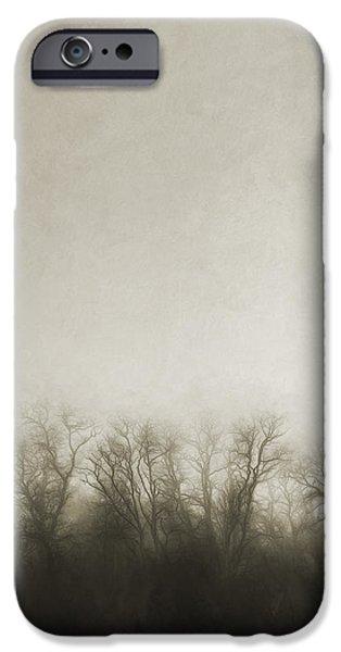 Fog Mist iPhone Cases - Dark Foggy Wood iPhone Case by Scott Norris