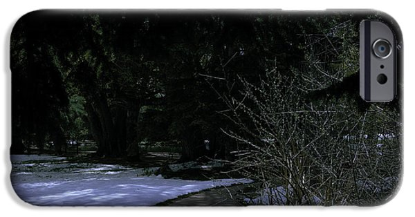 Ledge iPhone Cases - Dark Path iPhone Case by Rachael Armstead