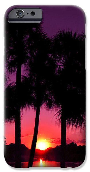 Palm Tree Greeting Cards iPhone Cases - Dawn Of Another Perfect Day iPhone Case by Kenneth Krolikowski