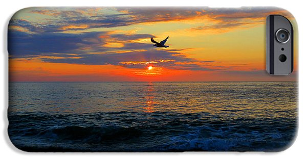 Freedom iPhone Cases - Dawning Flight iPhone Case by Dianne Cowen