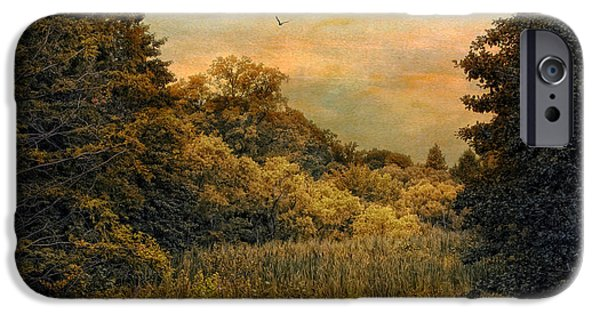Wetlands iPhone Cases - Day is Done iPhone Case by Jessica Jenney