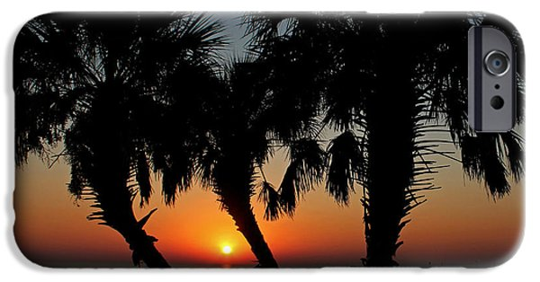 Pleasure iPhone Cases - Daybreak iPhone Case by Judy Vincent