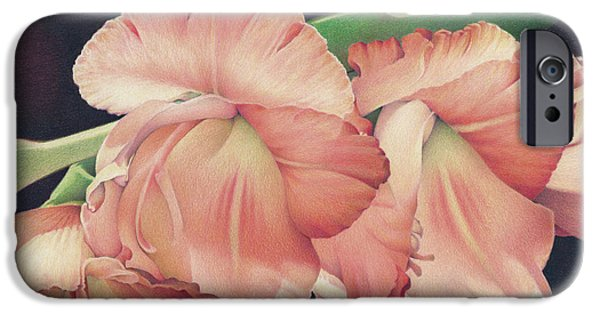 Gladiolas iPhone Cases - Daylights Last Dance iPhone Case by Amy S Turner