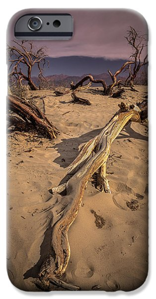 Sand Dunes Pyrography iPhone Cases - Dead Tree in the Sand iPhone Case by Rick Strobaugh